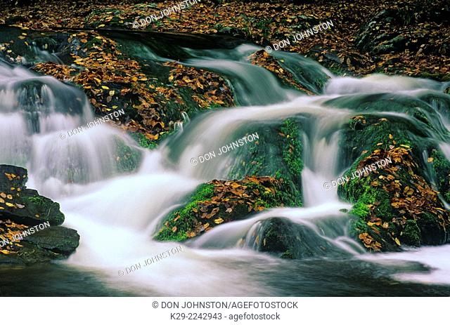 Laurel Creek waterfall, Great Smoky Mountains National Park, Tennessee, USA