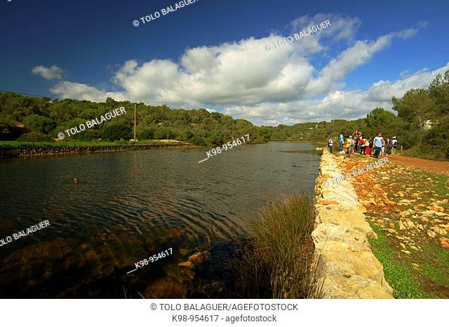 Ses Fonts de n'Alis, Mondrago Natural Park, Santanyi. Migjorn, Majorca, Balearic Islands, Spain