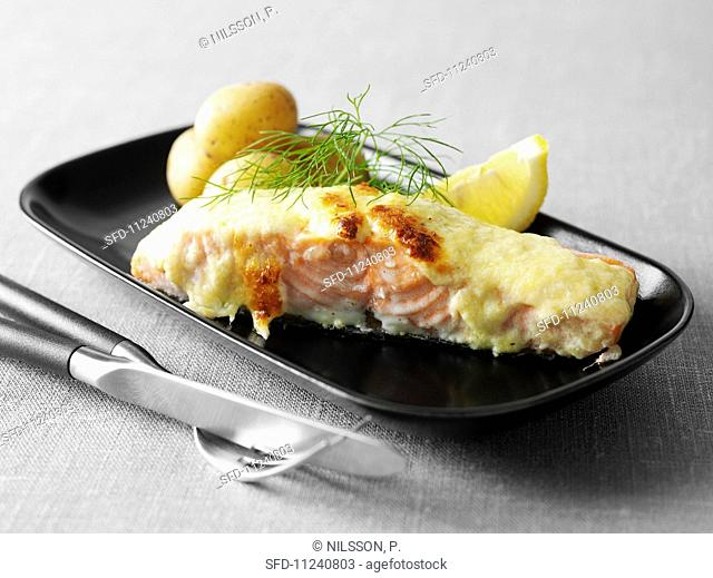 Salmon topped with Västerbotten cheese and baked