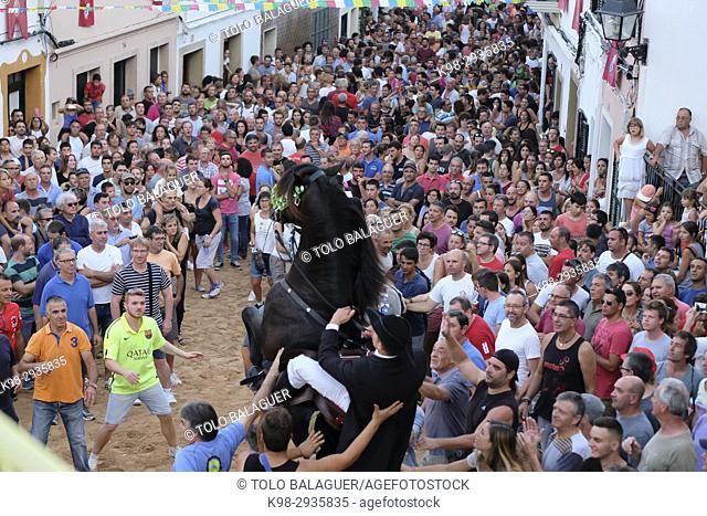 Jaleo, traditional dance with horses, originally from the 14th century, fiestas de Sant Bartomeu, Ferreries, Minorca, Balearic Islands, Spain