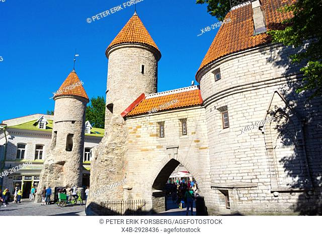 Viru väljak, Viru Gate, gate to old town, Tallinn, Estonia