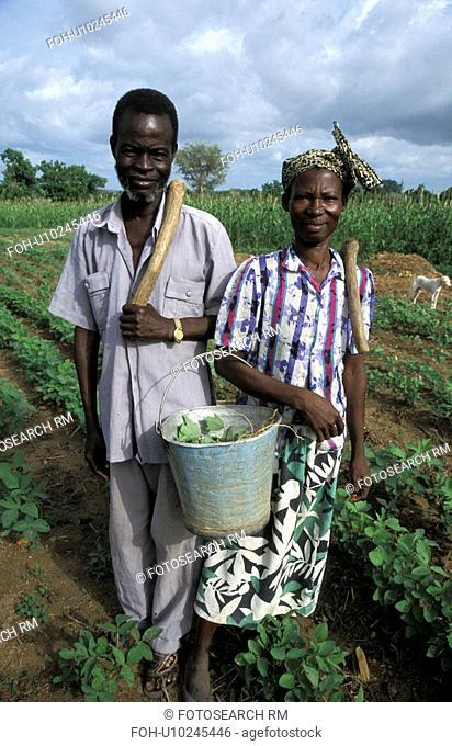 farmers, couple, ghana, 7649, person, people