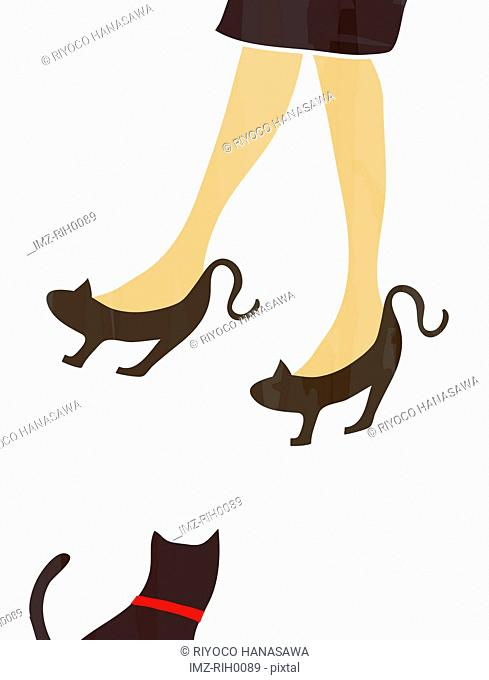 Illustration of a woman wearing cat like shoes and a black cat
