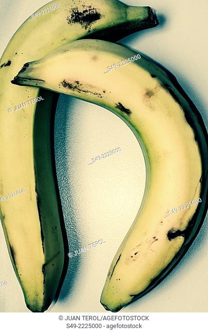 Bananas, elevated view