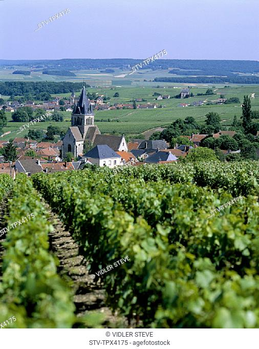 Champagne, France, Europe, Holiday, Landmark, Near, Reims, Tourism, Travel, Vacation, Vineyards