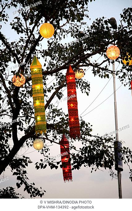 Indian Deepawali diwali festival ; lanterns hanging on tree ; Dadar ; Mumbai Bombay ; Maharashtra ; India