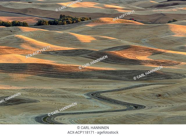 Rolling fields of the Palouse, from Steptoe Butte, Washington, USA