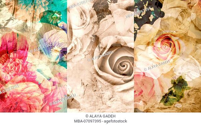 photomontage, flowers, detail, blur