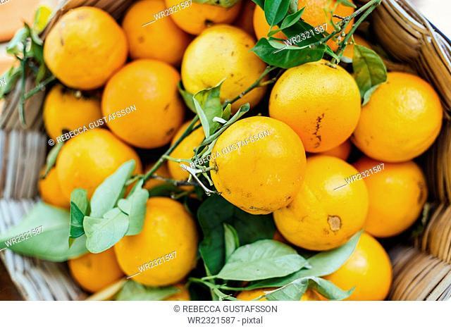 Directly above shot of lemons in wicker basket