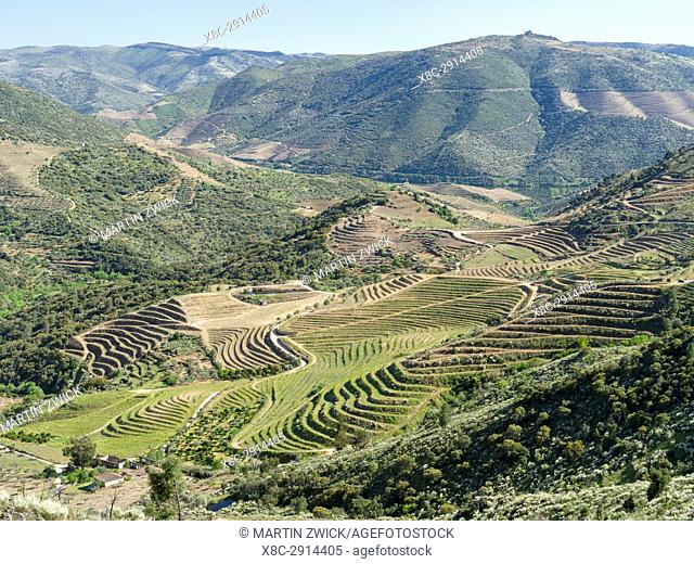 Valley of river Douro near village Coleja. The valley of river Douro. It is the wine growing area Alto Douro and listed as UNESCO World heritage