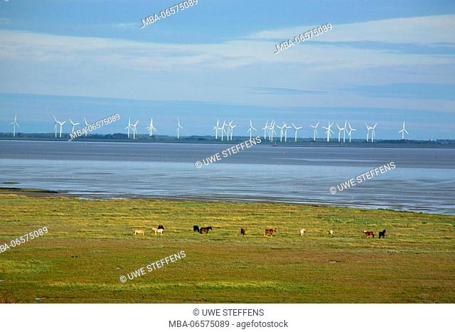 View from the dunes of the North Sea island Juist above the Wadden Sea on wind power stations on the East Frisian mainland