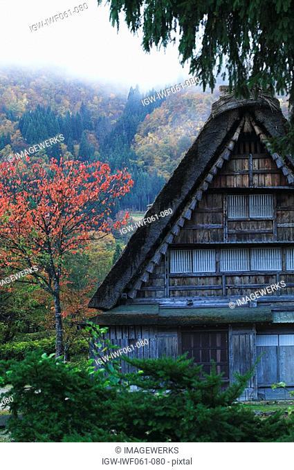 Japan, Gifu Prefecture, Shirakawa Village, Traditional style house