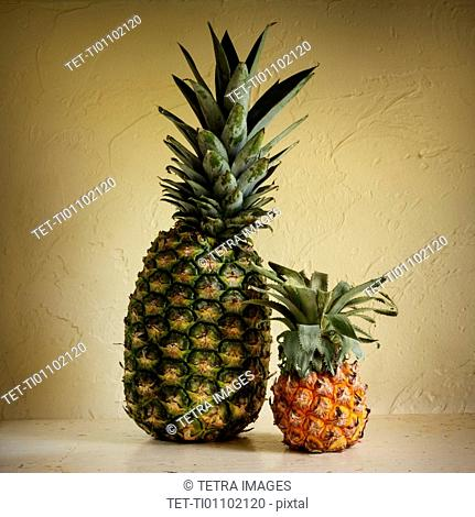 Fresh and rotting pineapples against yellow wall