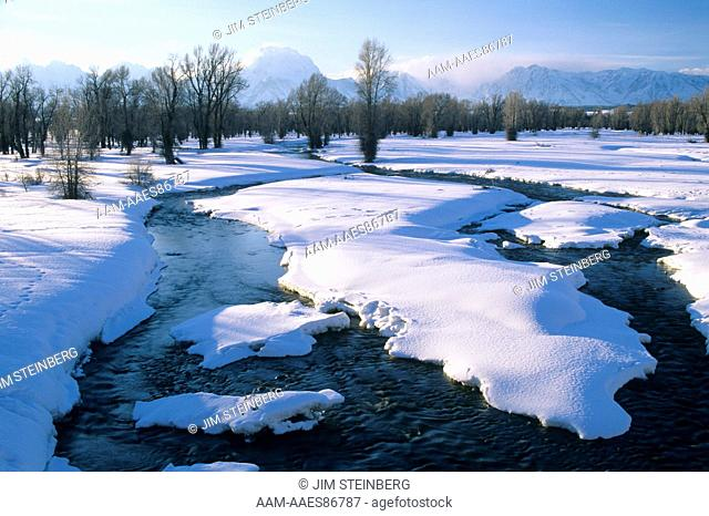 Side Channels of Snake River in Winter, Grand Teton NP, Wyoming