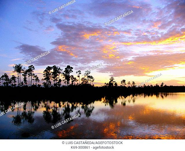 Sunset at Everglades National Park. Florida. USA
