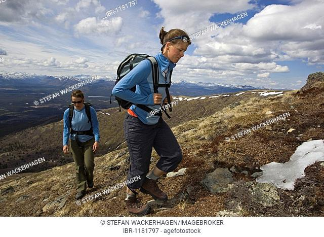 Two young woman hiking, Mt. Lorne, Mountains, Pacific Coast Ranges behind, Yukon Territory, Canada, North America