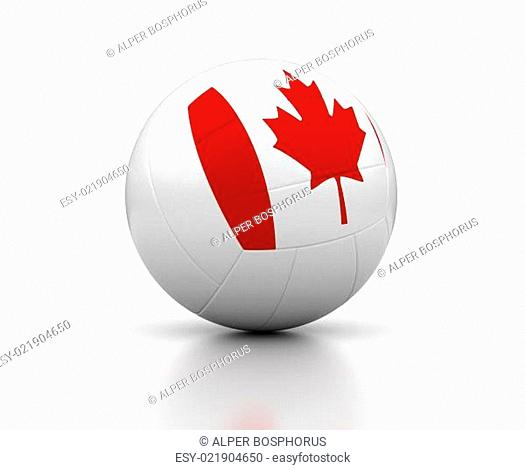 Canadian Volleyball Team