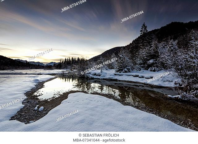 Evening mood in the wintry Isar wetlands
