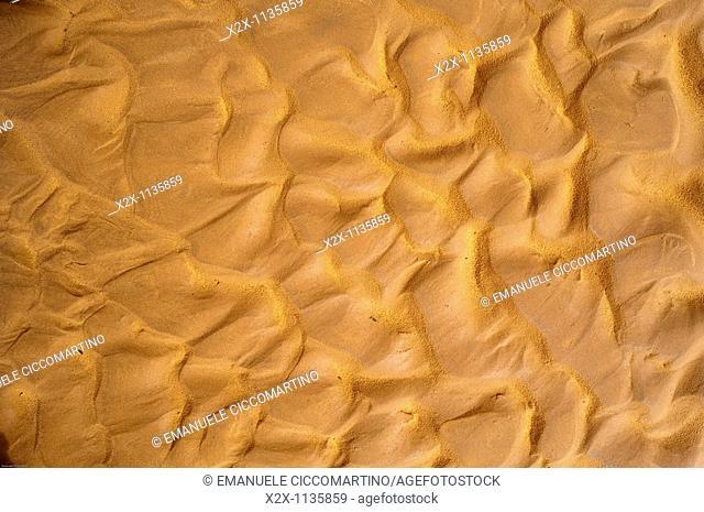 Sand, Saf Saf river, border with Algeria, oasis of Figuig, province of Figuig, Oriental Region, Morocco