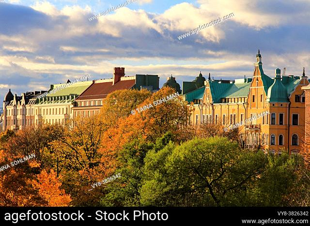 Treetops and residential houses in central Helsinki on a beautiful day of autumn