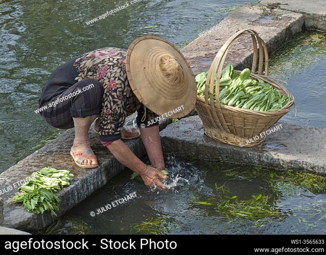 Woman farmer washing vegetables in a river in a village in Yunnan province, China