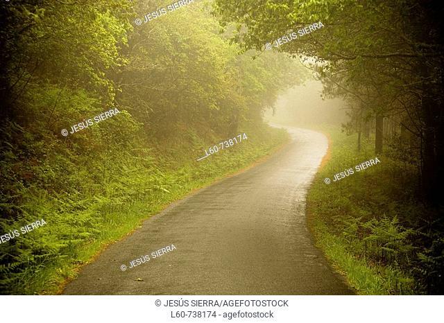 Country road, Finisterre. La Coruña province, Galicia, Spain