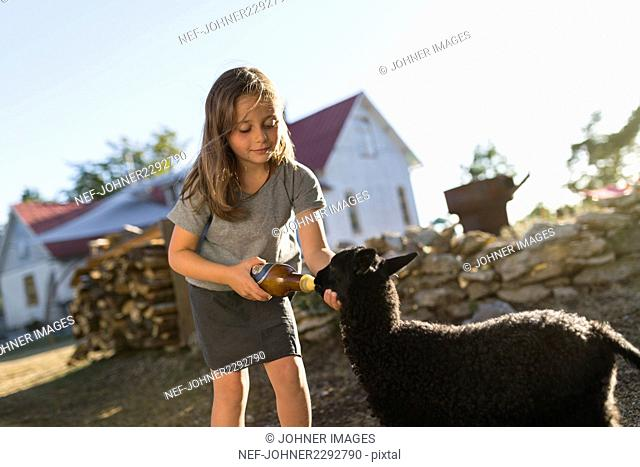 Girl feeding goat in backyard