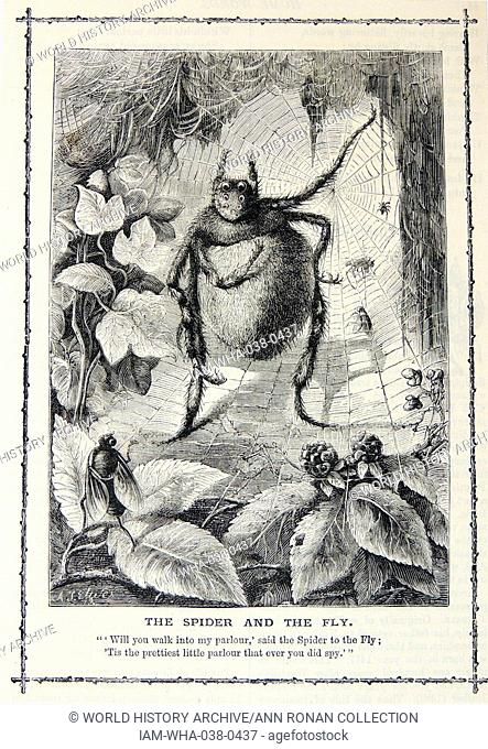 Will you walk into my parlour said the spider to the Fly .' Illustration by Alfred Thomas Elwes for the nursery rhyme the Spider and the Fly