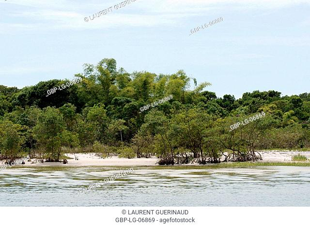 Beach, Ilha do Mel, Paraná, Brazil
