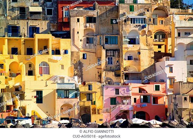 Corricella, Procida Island, Gulf of Naples, Campania, Italy