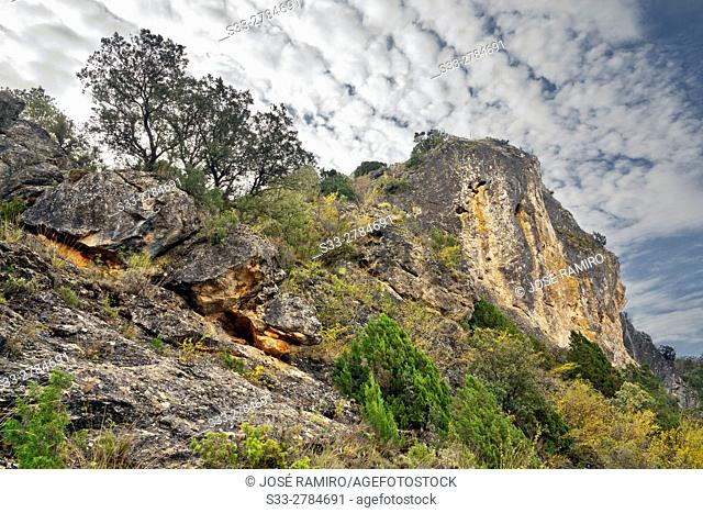 Canyon of Rio Dulce. Aragosa. Guadalajara. Castilla la Mancha. Spain. Europe