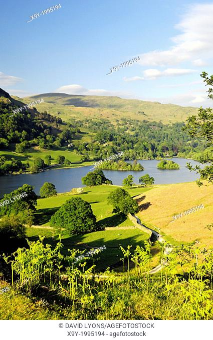 Lake District National Park, Ambleside, Cumbria, England. East over Rydal Water from Loughrigg Terrace. Summer