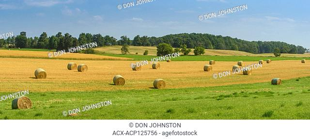 Late summer hay bales and pastures., Dufferin County, Ontario, Canada