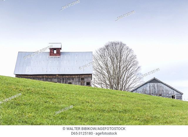 USA, New England, Vermont, Rockingham, barn, autumn