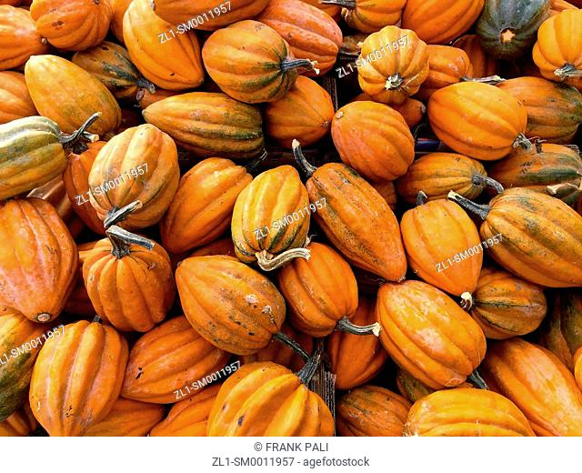 Small organic pumpkins