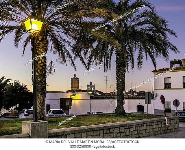 Lampposts and palms at Heart of Mary square and Our Lady of the Candelaria church on the background in Zafra. Badajoz. Spain. Europe