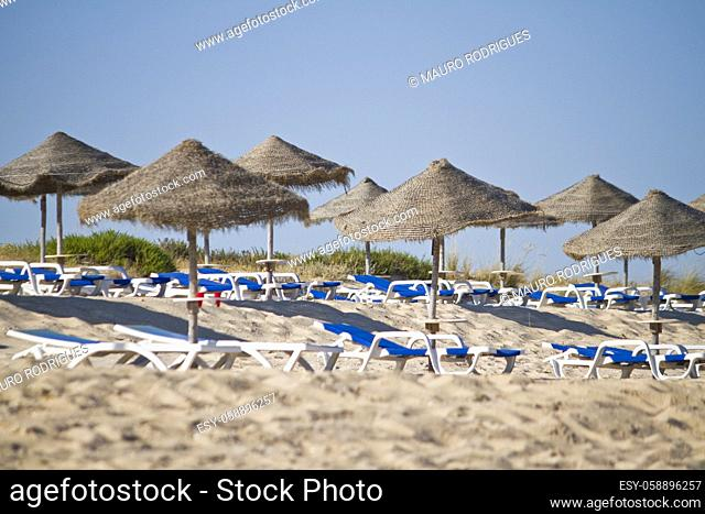 Aligned view of some beach chairs and straw umbrellas