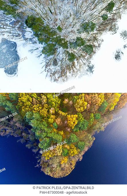 COMBO - The 2-part composite picture shows the same section of wooded bank of Treplin lake near Treplin, Germany, in winter on 17 January 2017 (top) and in...