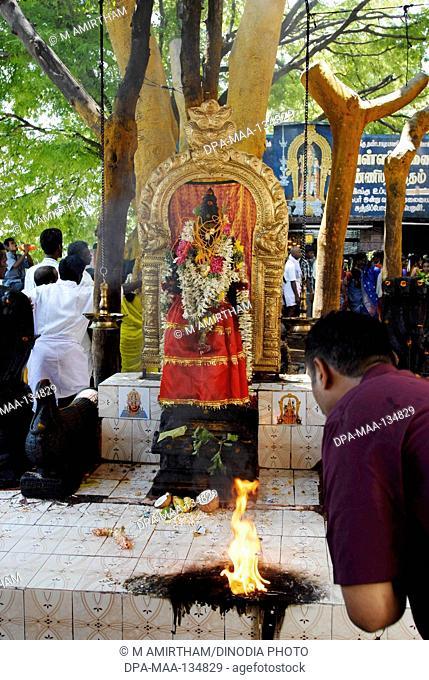 Valli Amman at Valli sunai north side of Palani hill ; Tamil Nadu ; India