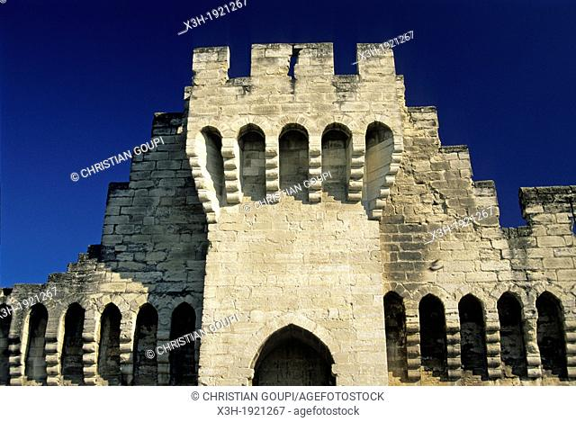 curtain wall of the Palais des Papes, Avignon, Vaucluse department, Provence-Alpes-Cote d'Azur region, southeast of France, Europe