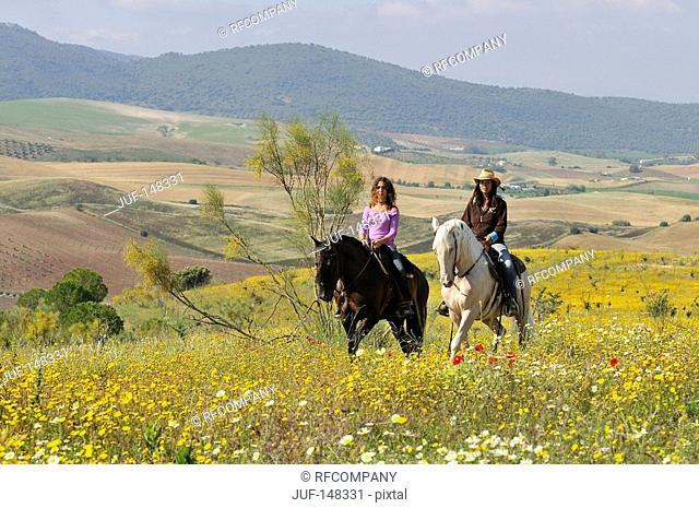 two riders on meadow
