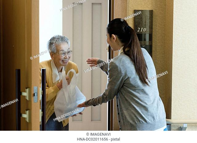 Care worker serving meal to senior couple