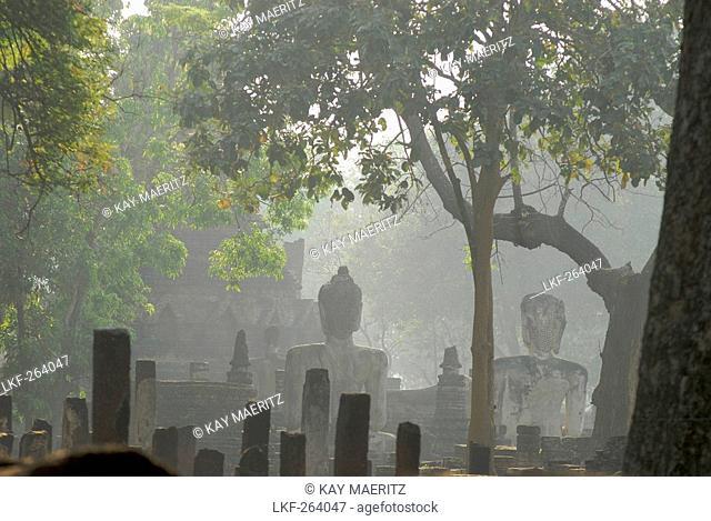 Buddha statues in the morning haze, Kamphaeng Phet, Wat Phra Khaeo, Central Thailand, Asia
