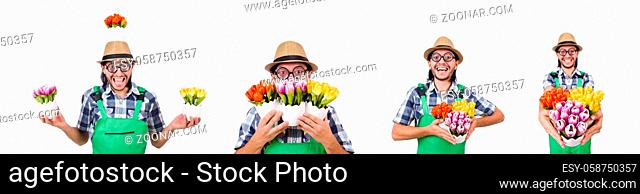 Man gardener with flowers on white
