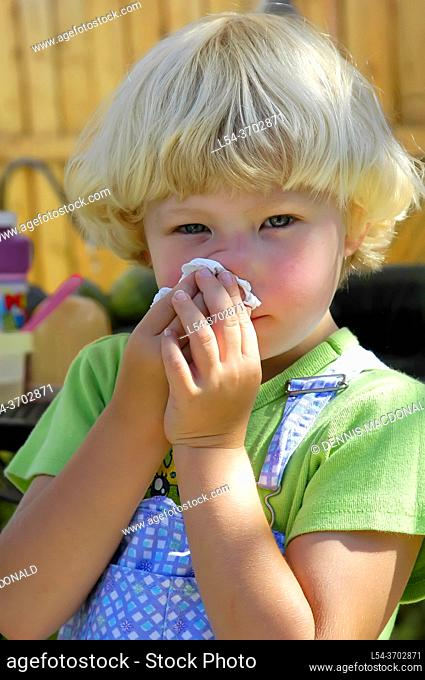 4 year old girl with allergies cleans nose with tissue