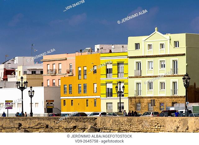 Barrio de la Viña. Colorful buildings in the historic center of Cadiz City, Andalusia Spain. Europe