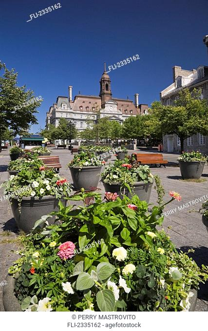 City Hall and Place Jacques-Cartier in summer; Old Montreal, Quebec, Canada