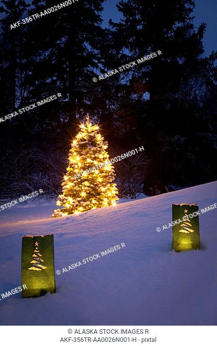 Luminaries decorate the snow with a lit Christmas tree in background, Anchorage, Southcentral Alaska Digitally Altered
