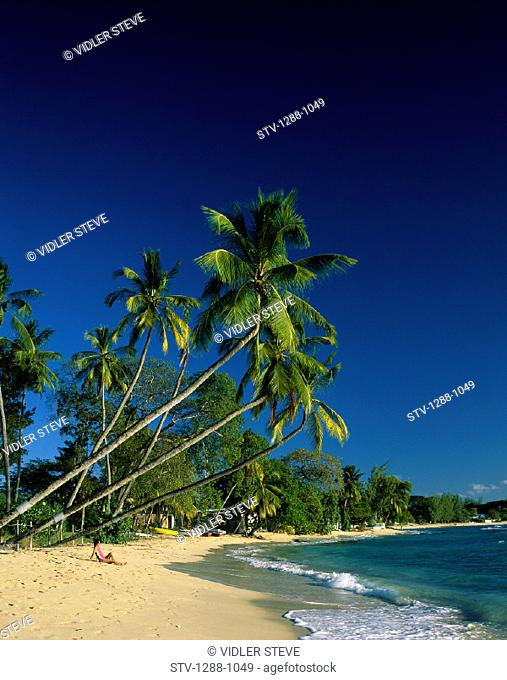 Barbados, Beach, Caucasian, Holiday, Isolated, Isolation, Kings beach, Landmark, Lay, Lying, Palm, Palms, People, Relax, Relaxin
