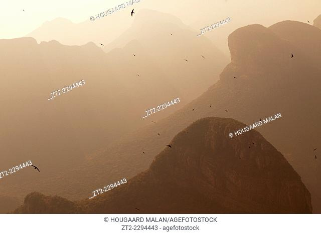 Landscape photo of birds gliding amongst the depths of Blyde River Canyon in sunrise light. Mpumalanga, South Africa